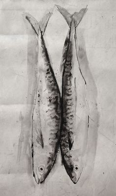 Pen and Ink - Mackerel