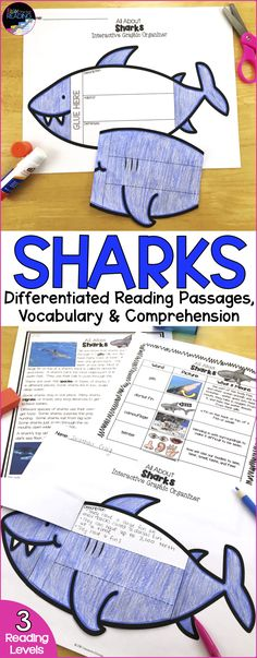 Sharks Differentiated Reading Passages! Perfect for guided reading groups, your ocean animals unit, nonfiction reading, nonfiction text features, finding text evidence, and more! Includes graphic organizers and a sharks crossword!  Perfect for Shark Week! Ocean Theme | Ocean Animals Teaching Ideas | Ocean Animals Activities | Ocean Animals Worksheets