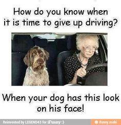Women driver's!