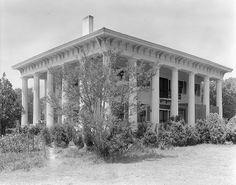 Dicksonia Plantation  Alabama  lost to fire