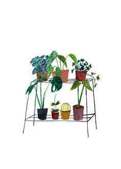 Wire Plant Stand - Elizabeth Barnett