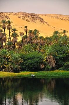 The Nile Ancient Egyptian is a major north-flowing river in northeastern Africa, generally regarded as the longest river in the world.It is 6,853 km (4,258 miles) long.