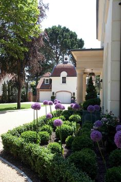 Front Yard Landscaping Ideas - Take these cheap and also easy landscaping ideas for an attractive backyard. Front Gardens, Formal Gardens, Outdoor Gardens, Indoor Outdoor, Boxwood Landscaping, Front Yard Landscaping, Landscaping Ideas, Acreage Landscaping, Outdoor Landscaping