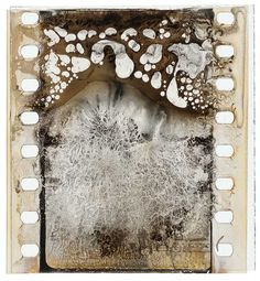 Decomposed nitrate film frame clipping from the Turconi Collection