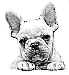 French Bulldog rubber stamp WM by dragonflybuzz on Etsy, $8.25