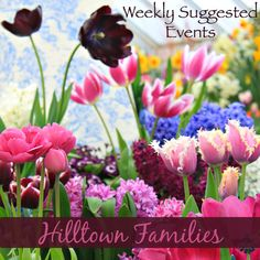 What are your plans this weekend? Our list of Weekly Suggested Events is up at www.HilltownFamilies.org and chock-full of great ideas, including spring musicals, spring bulb shows, museum adventures, science, snowshoeing, music, history, movies and MORE!