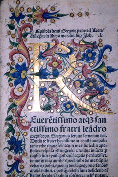 [Capolettera miniato] Medieval Manuscript, Medieval Art, Renaissance Art, Illuminated Letters, Illuminated Manuscript, Creative Lettering, Hand Lettering, Illumination Art, Book Of Kells