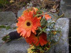 Orange Gerber Daisy Wedding Flower bridal bouquet design by Julie Floyd of Creative Gardens, Lee, NH http://www.creativegardensnh.com