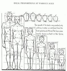 Libros para aprender a dibujar el cuerpo humano (Andrew Loomis) - ForoCoches