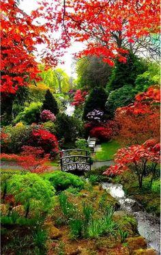 Beautiful Nature Pictures, Beautiful Nature Wallpaper, Amazing Nature, Beautiful Landscapes, Unique Gardens, Amazing Gardens, Beautiful Gardens, Beautiful Flowers, Dream Garden