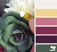 market hues (design seeds)