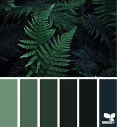 color nature | design seeds | Bloglovin