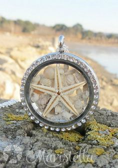 REAL SEASTAR and Real SeaSHELLS in a 30 mm two sided glass pendant/necklace.Mermaid silver CLOSED locket, seastar pendant with length choice Nautical Fashion, Nautical Style, Floating Charms, Glass Pendants, Sea Shells, Bracelet Watch, Pendant Necklace, Charm Necklaces, Unique Jewelry