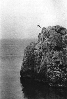 Ralph Gibson • Dive