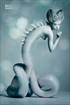 This image is unique. It gives a sea creature type feel to it. The image combines a person with the body of a snake but the person is also given fin type things on their back. The two parts of the image are blended nicely