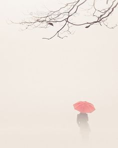 Nicolas Bell, photography, fall photography, fog photography, autumn, fall, pastel, soft, woman, umbrella, red, Open Edition Print