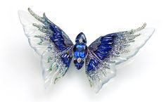 Wallace Chan brooch from the Fluttery series. This one is called Whimsical Blue and the body is made up of three tanzanites set with diamonds and the wings are made of carved icy jadeite, lapis lazuli and sapphire.