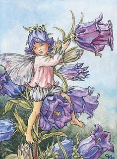 Ceramic Sensations Canterbury Bell Flower Fairy. This little fairy boy dressed in blue and lavender play clothes, seems to be riding the Canterbury bell flower like it is his make believe pony!