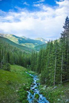 rocky mountain national park, co. one day we will live IN the mountains! :D but for now, the goal is denver.