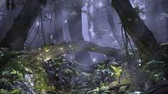 Image result for enchanted forest