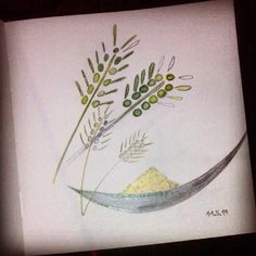 Yesterday's work. #drawing #sketchbook #pencil #colourpencil #cereal #grain #corn