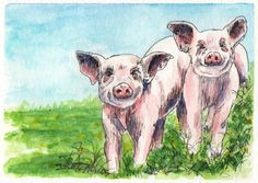 A World Of Doodlewashes ~ Doodlewash® Watercolor Sketch, Watercolor Illustration, Cards For Friends, Scribble, Easy Drawings, Pigs, Moose Art, Sketches, Artist