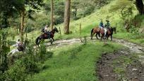 R.Dominicana busca participación internacional en primera feria ecoturística http://www.rural64.com/st/turismorural/RDominicana-busca-participacion-internacional-en-primera-feria-ecoturi-5556