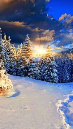 Beautiful Landscape of Nature Winter Photography, Landscape Photography, Nature Photography, Winter Pictures, Nature Pictures, Winter Wonderland Wallpaper, Winter Scenery, Winter Magic, Snow Scenes