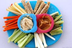 Hmm...yeah, apples make good snack-stix also. (Also pictured: Carrots, celery, kiwi, string cheese, cucumbers, and bread)