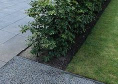 Hardscaping Design Guide for Paths and Pavers - Gardenista Bluestone paver metal edging gravel