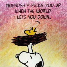 For the Love of Snoopy. likes · talking about this. This is a drama free page for those who love Snoopy, Woodstock and the Peanuts. Feel free to leave your bullshit at the door. Broken Friendship Quotes, Friendship Images, Funny Friendship, Friendship Theme, Peanuts Quotes, Snoopy Quotes, Peanuts Cartoon, Peanuts Snoopy, True Friends