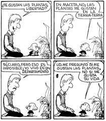 Te gustan las plantas? H Comic, Mafalda Quotes, Mea Culpa, Lucky Luke, Humor Grafico, Amazing Adventures, Bruce Lee, Funny Comics, Comic Strips