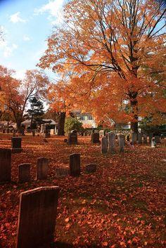 New England Autumn Grave Yard - Halloween Makeup Image Halloween, Fall Halloween, Halloween Costumes, Alien Halloween, Happy Halloween, Halloween College, Funny Costumes, Halloween Pictures, Couple Halloween