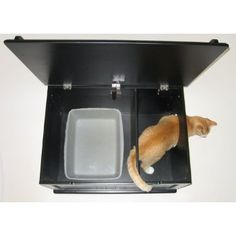 Another litter box solution . This is great because all the litter on the cats feet stays in that second little compartment !