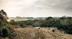 Westhoek natuurreservaat De Panne #nature #natuur #westkust #gerritdevinck #gerritdevinckfotografie #DePanne