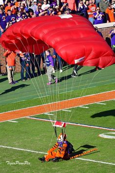 Clemson Football, Clemson Tigers, University, Outdoor Decor, Community College, Colleges