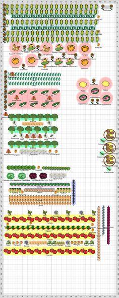 Garden Plan - 2013: Davis Garden