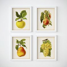 Kitchen art Kitchen printable art Set of 4 by RestoredBotanicalArt