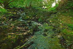 Rio Cabra. La Borbolla, Concejo de Llanes. Principado de Asturias. Spain. [By Valentin Enrique].