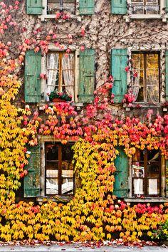 Swiss Autumn (Switzerland) Shutter color for front door?
