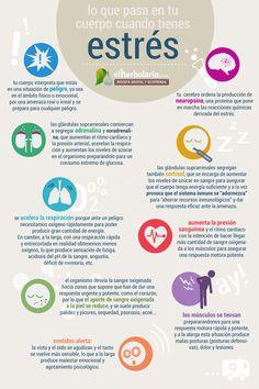 Infografía Estrés Lo que pasa en tu cuerpo cuando tienes estrés . . . . . . . . . . . . . . . . . . . . . . . .  > Revista digital: http://www.elherbolario.com  > Ecotienda: http://ecotienda.elherbolario.com