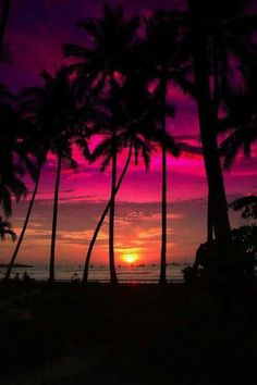 Purple, red, and orange- a passionate Key West sunset.