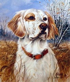 James Killen THAT'S MY DOG TOO-English Setter. This breed is gentle, kind, and affectionate, devoted to his family, sociable with strangers, and gets along just fine with kids. And a GREAT hunter on t