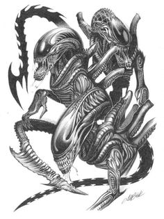 Aliens and Predators