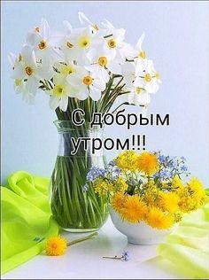 Стеклянная Ваза, Травы, Шутки, Цветы, Картинки, Карты, Подарки, Красивые Цветы
