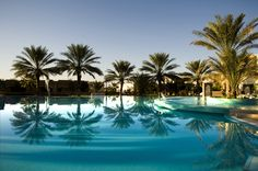 Palm tree with reflection on blue swimming pool © parkisland Palm Trees, Swimming Pools, Photos, Outdoor Decor, Photography, Travel, Reflection, Home Decor, Blue