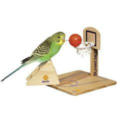 Clever spielen mit Köpfchen! Wellensittiche gehören zu den intelligentesten Vögeln, sie sind sehr gelehrig und neugierig. Streetball bietet Ihrem Vogel ein großes Spielvergnügen. Das 3teilige Set besteht aus Ball, Standleiter und Standwurfkorb. https://www.plus.de/p-1409105000?RefID=SOC_pn