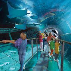 aquariums on aquarium and spain