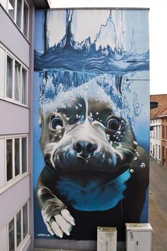 Artist Smates phenomenal large scale Street Art mural of a swimming dog Mechelen, Belgium #art #graffiti #streetart pic.twitter.com/zTJg3tMpaH