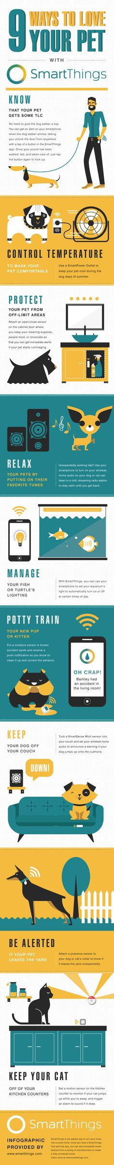 9 Ways to Love Your Pet